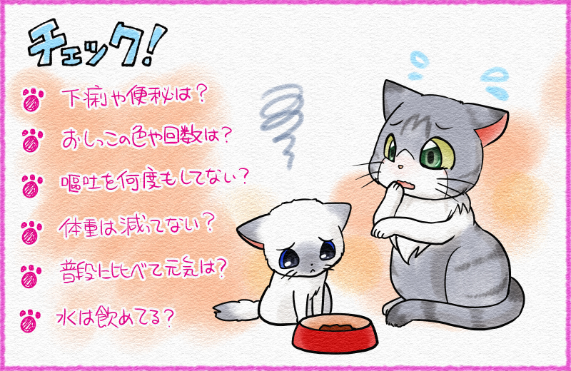 子猫 ご飯 食べ ない 子猫がカリカリ(ドライフード)を食べない!理由と対策法